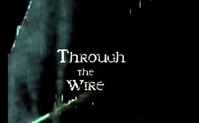 Through The Wire by Pip Starr