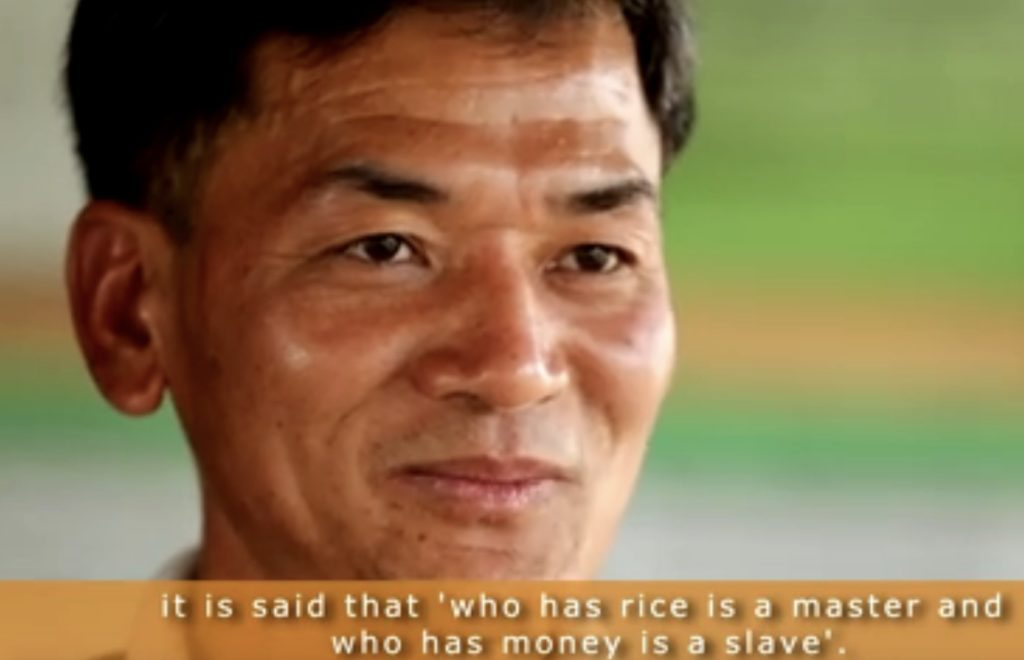 Indigenous Seed Practices For Sustainable Agriculture